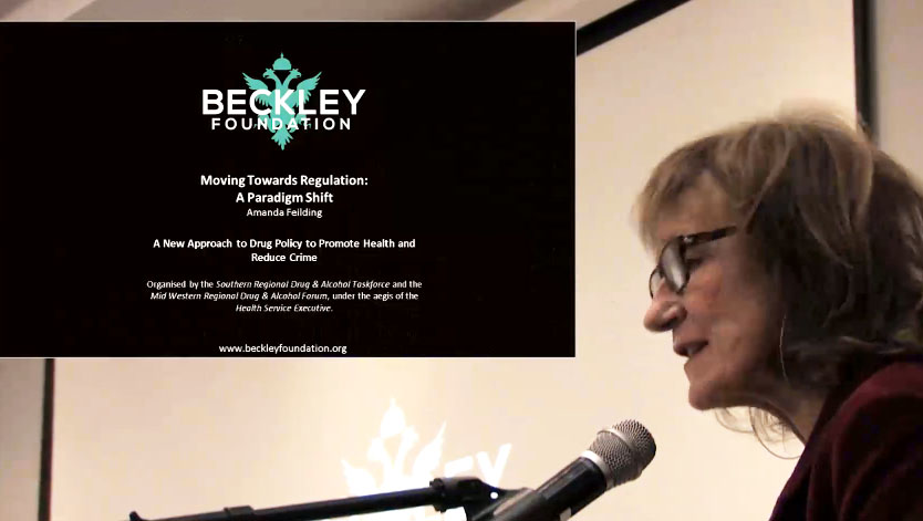 Conference: A New Approach to Drug Policy to Promote Health and Reduce Crime - Amanda Fielding